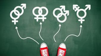 Cómo integrar la perspectiva de género en la educación superior. course image