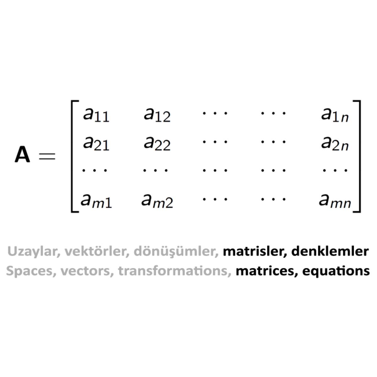 Doğrusal Cebir II: Kare Matrisler, Hesaplama Yöntemleri ve Uygulamalar / Linear Algebra II: Square Matrices, Calculation Methods and Applications course image