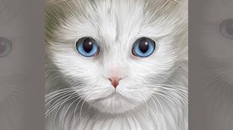 Vector Pet Portraits: Cats! course image