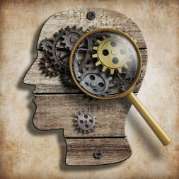 Psychology: Memory and Cognition course image