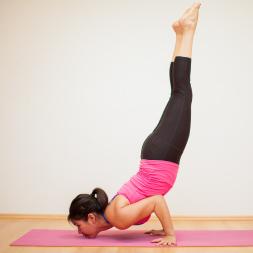 Health and Fitness - Flexibility, Calisthenics and Plyometrics course image
