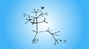 Computational Molecular Evolution course image