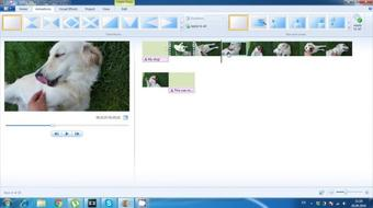 How to Go About Using Windows Movie Maker course image