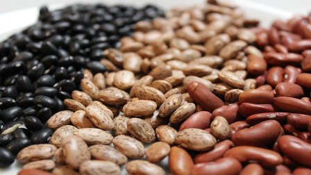 Preparing and Canning Dried Beans course image
