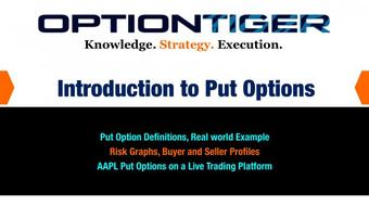 Introduction to Put Options in Financial Markets course image