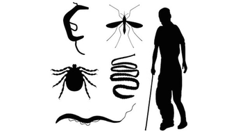 Tropical Parasitology: Protozoans, Worms, Vectors and Human Diseases course image