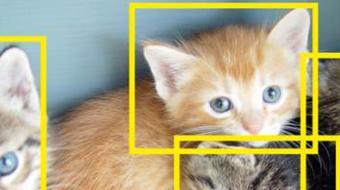 Detección de objetos course image