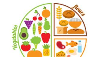 Human Health - Diet and Nutrition course image