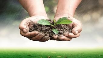Sustainable Soil Management: Soil for life course image