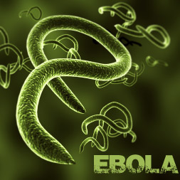 Understanding the Ebola Virus and How You Can Avoid It course image