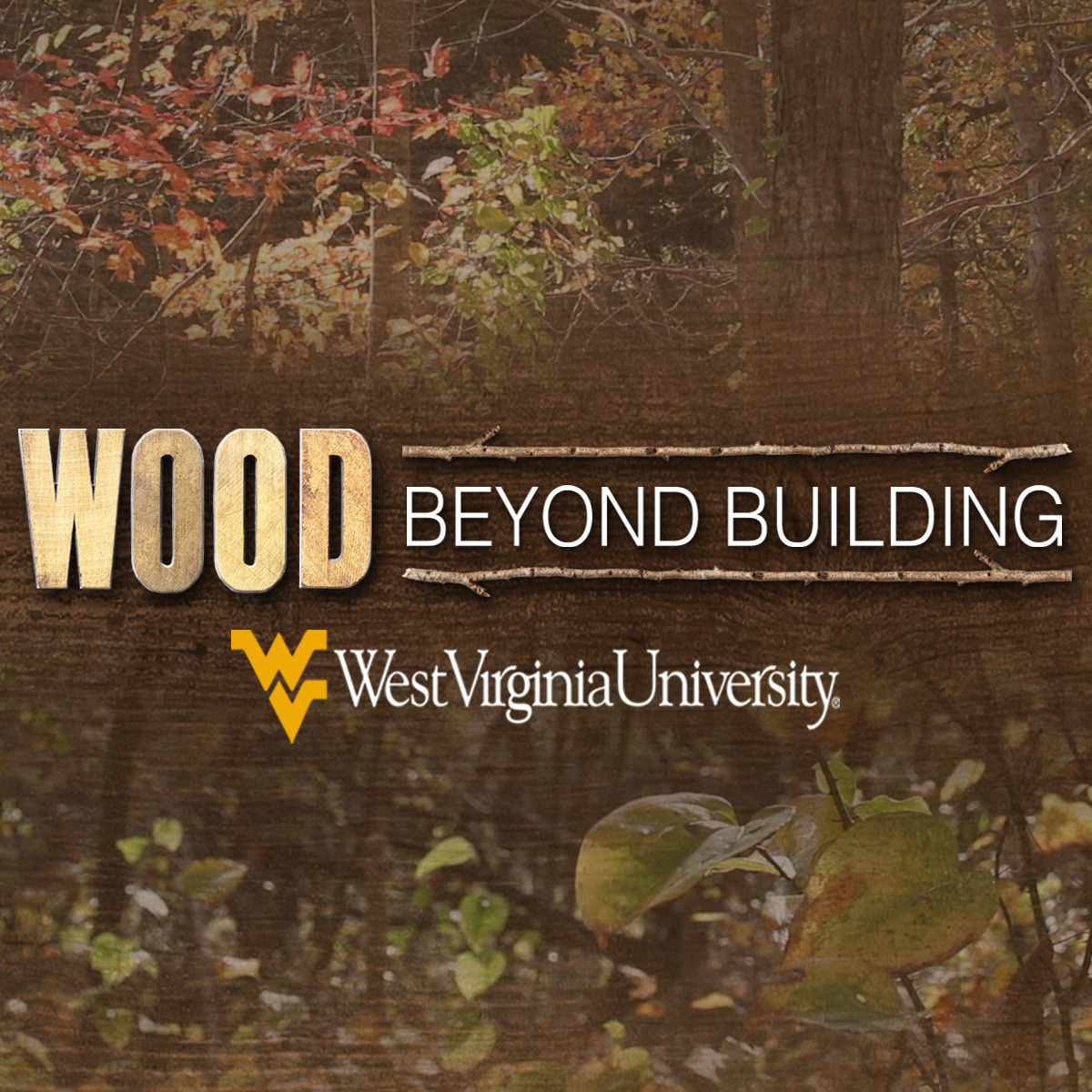 Wood Science: Beyond Building course image