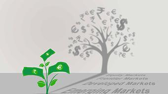Introduction to Investments course image
