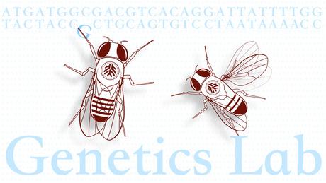遗传学实验 course image