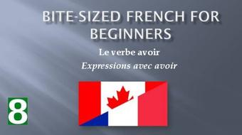 Bite-Sized French for Beginners: Le verbe avoir course image