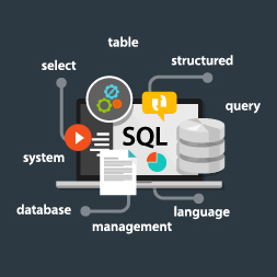 Databases - DML Statements and SQL Server Administration course image