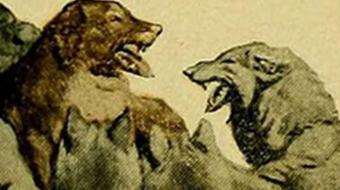 """""""Call of the Wild"""" by London: BerkeleyX Book Club course image"""
