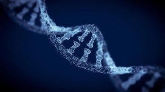 Using Personalized Medicine and Pharmacogenetics course image