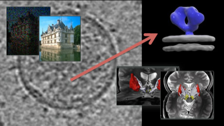 Image and Video Processing: From Mars to Hollywood with a Stop at the Hospital course image