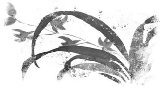 Japanese Black Ink Painting: Beginner's Orchids course image