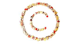 Copyright for Educators & Librarians course image