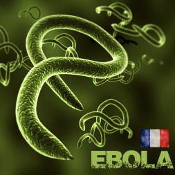 Comprendre le virus Ebola et comment l'eviter course image