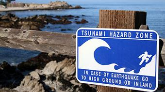Tsunamis and Storm Surges: Introduction to Coastal Disasters course image