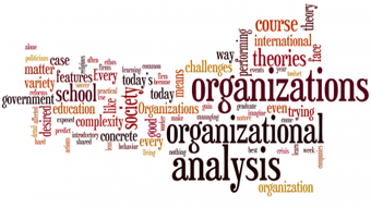 Organizational Analysis  course image