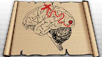 Exploring Neural Data course image