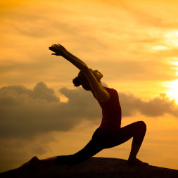 Yoga Exercises for Core Strength and Flexibility course image