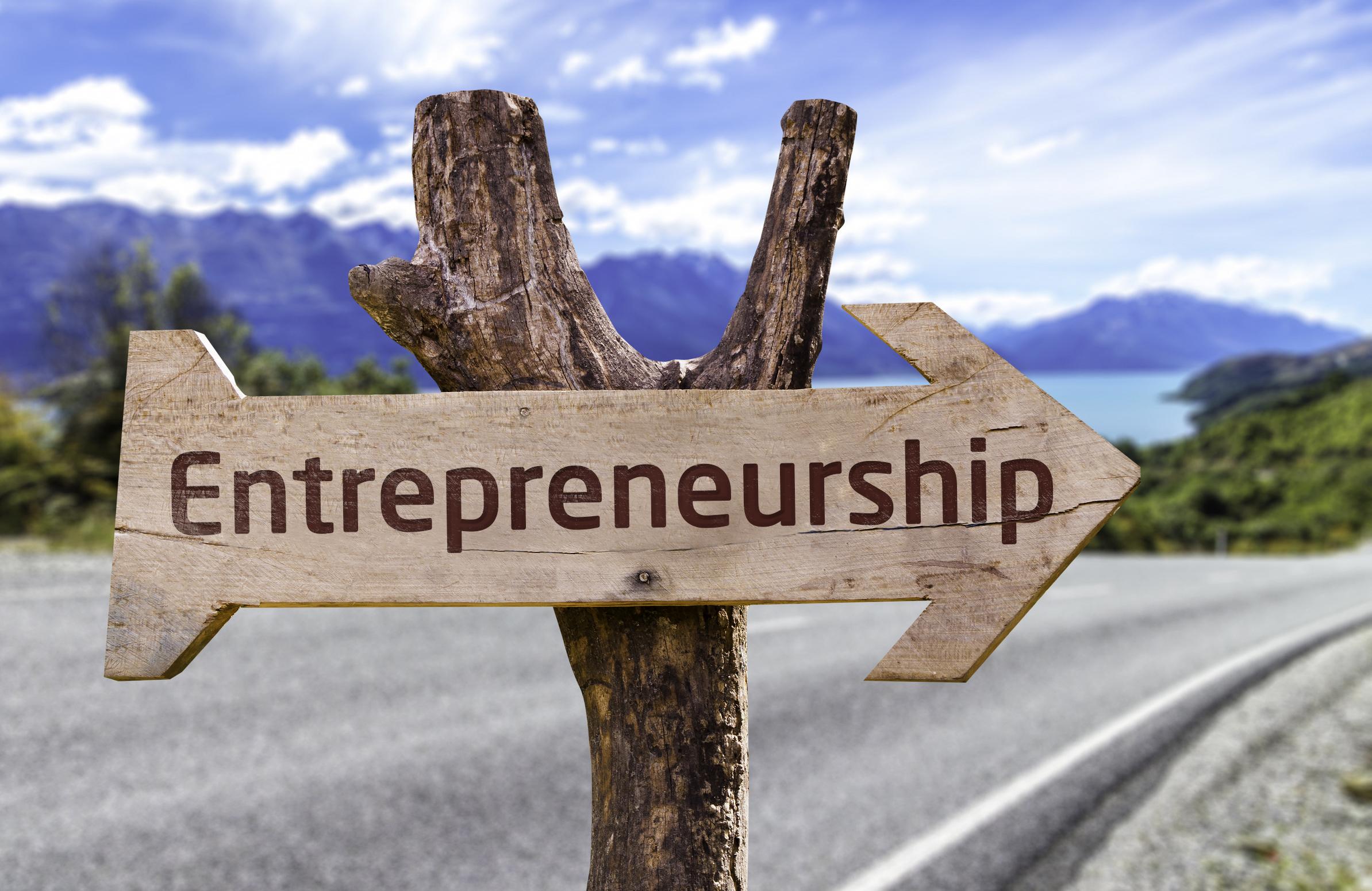 Unternehmensgründung im IT-Bereich - Wie gründe ich erfolgreich ein IT-Startup? course image