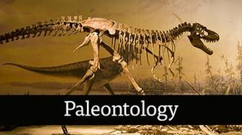 Paleontology course image