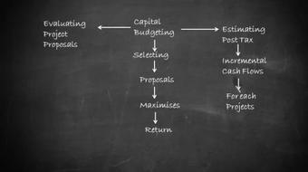 Financial Management NPV and IRR Techniques course image