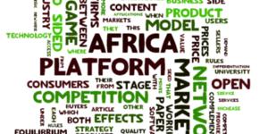 Africa Platform Management, Strategy, & Innovation course image
