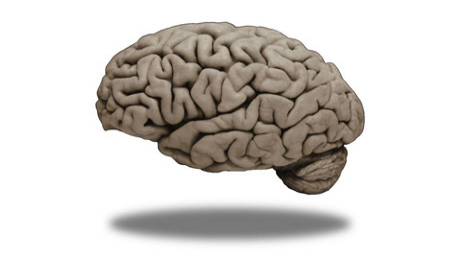 Medical Neuroscience course image