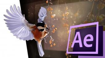 Turn a 2d photo into a 3d animation with After Effects! course image