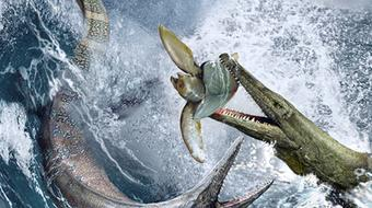 Paleontology: Ancient Marine Reptiles course image