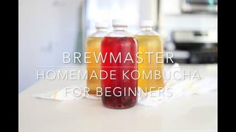 Brewmaster: Homemade Kombucha for Beginners course image