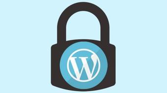 The Ultimate Step-By-Step Guide to WordPress Security course image