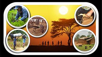 Forests and Livelihoods in Developing Countries course image
