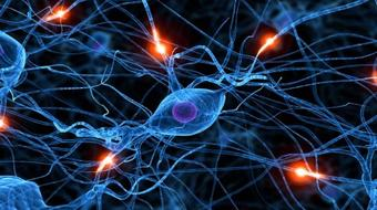 Learn Neural Networks using Matlab Programming course image