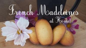 Make French Madeleines at Home! course image
