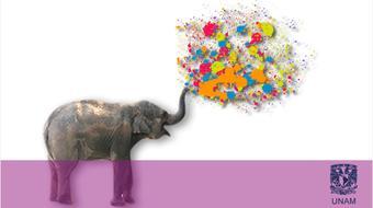 Ser más creativos course image