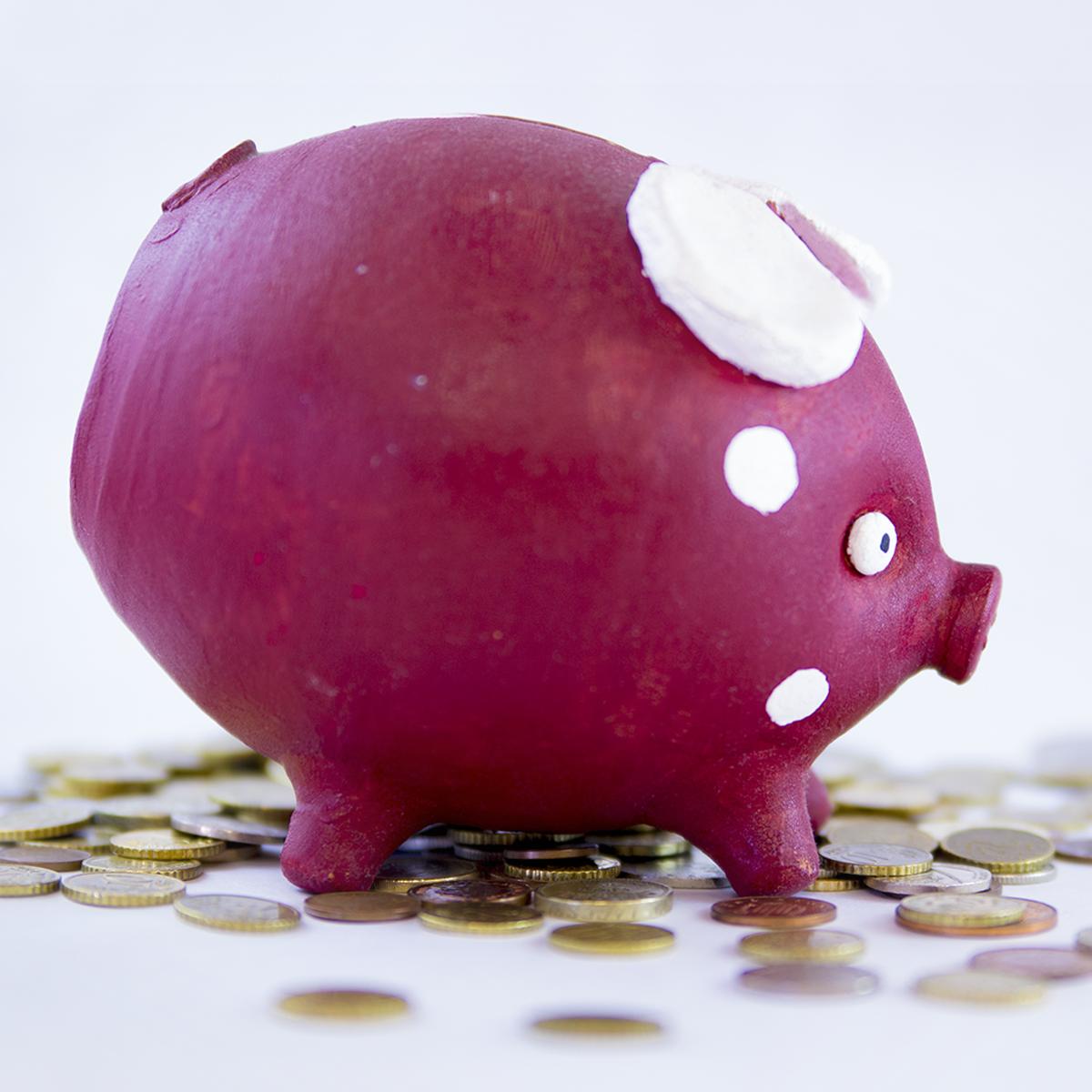 Kit básico (para evitar los errores más frecuentes) de finanzas course image
