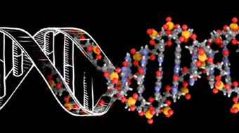 DNA: Biology's Genetic Code course image
