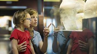 Educación y Museos (3ª edición) course image
