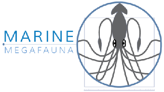 Marine Megafauna: An Introduction to Marine Science and Conservation course image