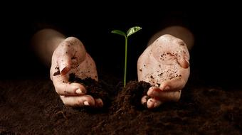 Soils: Introducing the World Beneath Our Feet course image