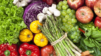 Fundamentals of Human Nutrition course image