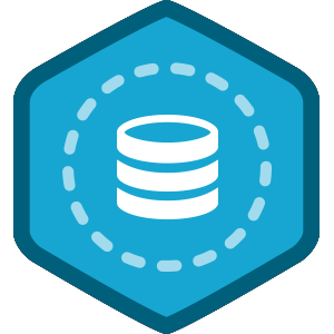 Browser Persistent Data with PHP course image