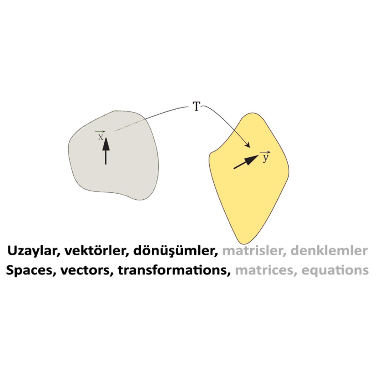 Doğrusal Cebir I: Uzaylar ve İşlemciler / Linear Algebra I: Spaces and Operators course image